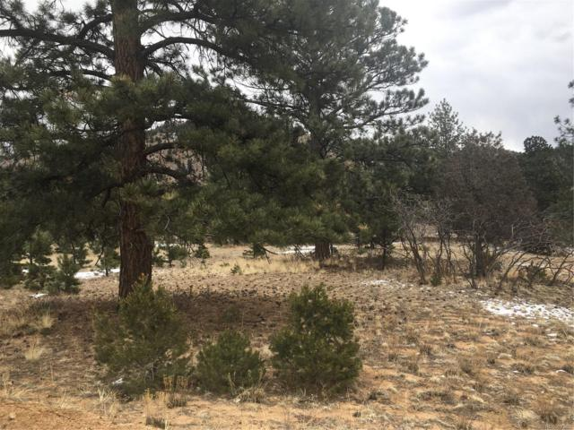 332 Red Feather Road, Cotopaxi, CO 81223 (MLS #4072755) :: 8z Real Estate