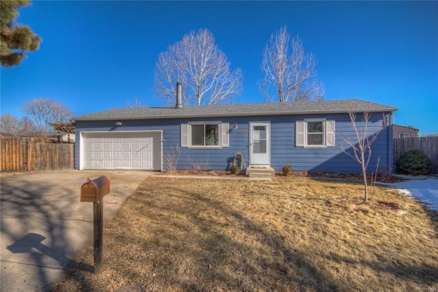 10730 Moore Circle, Westminster, CO 80021 (#4074654) :: The City and Mountains Group