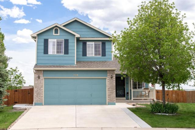 732 Quarterhorse Trail, Castle Rock, CO 80104 (#4080842) :: Sellstate Realty Pros