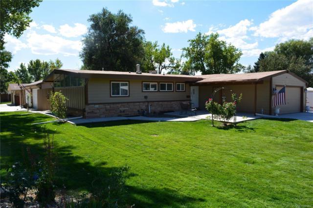 2790 E Peakview Avenue, Centennial, CO 80121 (#4082944) :: Wisdom Real Estate