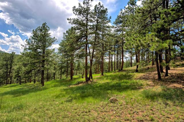 8213 Stags Leap Trail, Morrison, CO 80465 (#4085768) :: Bring Home Denver with Keller Williams Downtown Realty LLC