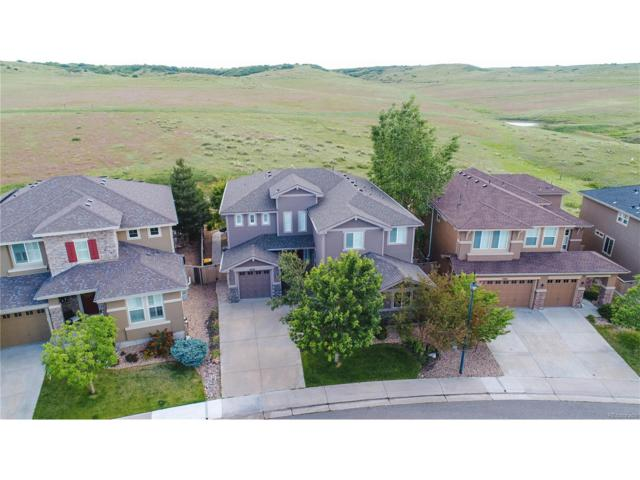 4478 Canyonbrook Drive, Highlands Ranch, CO 80130 (MLS #4089890) :: 8z Real Estate
