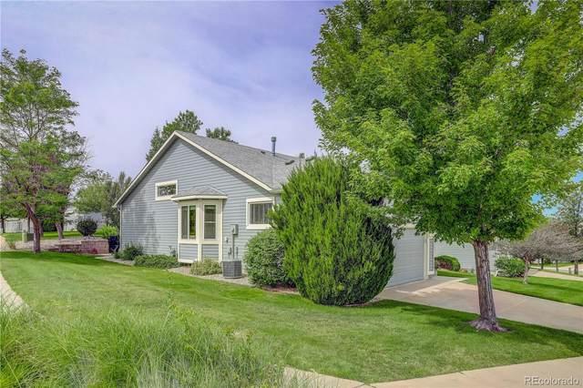 6768 Showhorse Court, Colorado Springs, CO 80922 (MLS #4090061) :: 8z Real Estate