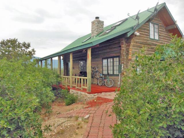 875 Sunrise Road, Cotopaxi, CO 81223 (MLS #4093794) :: 8z Real Estate
