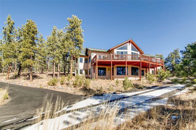 134 Hangmans Road, Bailey, CO 80421 (#4096161) :: Wisdom Real Estate