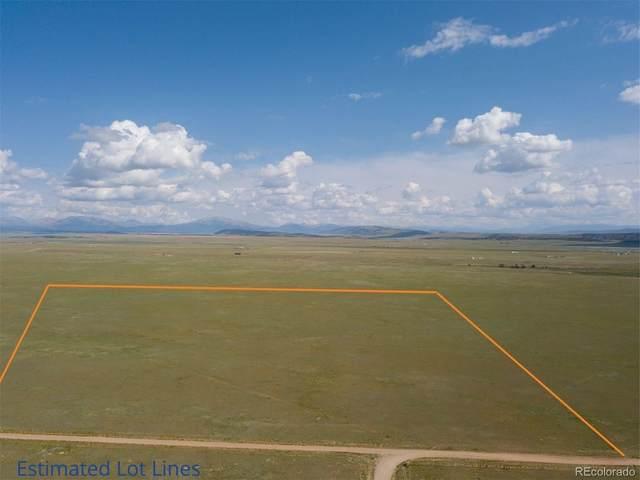 Salt Ranch Trail, Fairplay, CO 80440 (#4101192) :: Symbio Denver