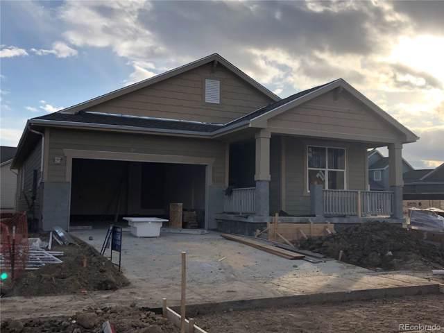 2483 Tyrrhenian Circle, Longmont, CO 80504 (MLS #4102352) :: 8z Real Estate