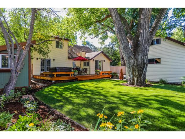 6447 S Gallup Street, Littleton, CO 80120 (MLS #4102436) :: 8z Real Estate