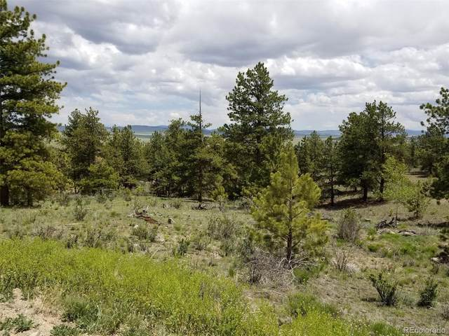 52 Bit Way, Hartsel, CO 80449 (#4103712) :: The Griffith Home Team
