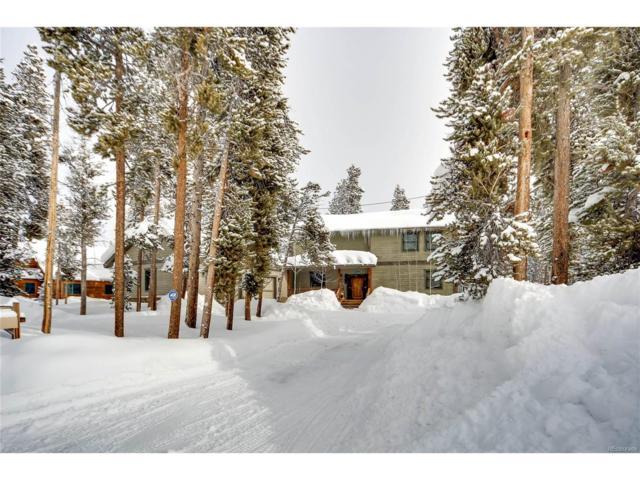 723 Baby Doe Drive, Leadville, CO 80461 (MLS #4103981) :: 8z Real Estate