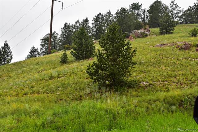 n/a Lewis Avenue, Victor, CO 80860 (MLS #4105731) :: Bliss Realty Group