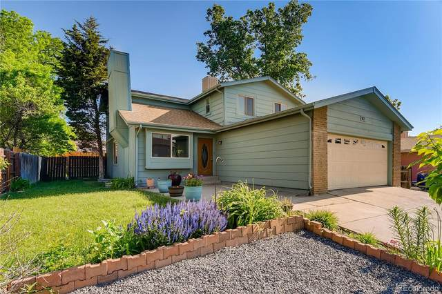 921 Downing Way, Denver, CO 80229 (#4109286) :: The DeGrood Team