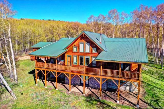 454 Mount Guyot, Jefferson, CO 80456 (#4113979) :: Mile High Luxury Real Estate