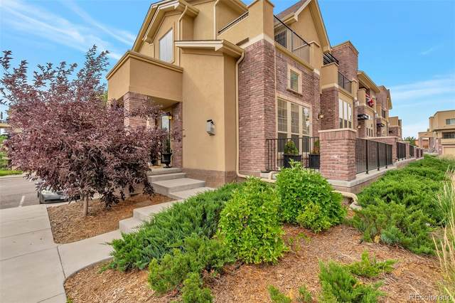 1100 Rockhurst Drive E, Highlands Ranch, CO 80129 (MLS #4114009) :: 8z Real Estate
