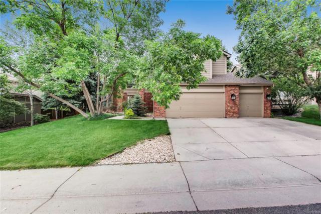 9318 Canyon Wren Court, Highlands Ranch, CO 80126 (MLS #4115511) :: 8z Real Estate