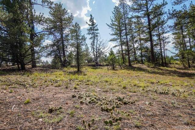 Lots 1 &2 19th Trail, Cotopaxi, CO 00000 (MLS #4115980) :: 8z Real Estate
