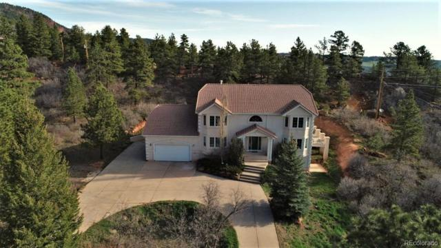 4850 Sandstone Drive, Monument, CO 80132 (#4117042) :: The DeGrood Team