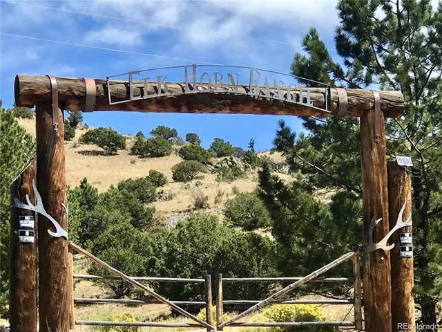 7 Elk Horn Ranch, Villa Grove, CO 81155 (#4120001) :: The DeGrood Team