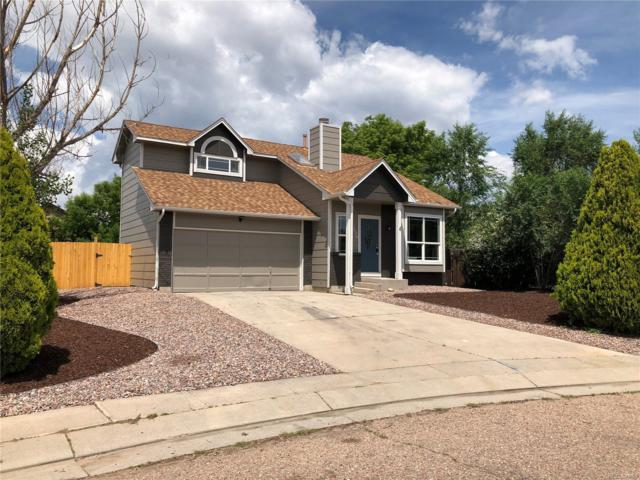 330 Oneil Court, Colorado Springs, CO 80911 (#4121493) :: The Heyl Group at Keller Williams