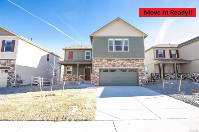 6078 Sun Mesa Circle, Castle Rock, CO 80104 (#4123051) :: Colorado Home Finder Realty