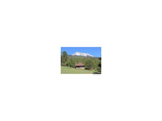 695 Cr 132, Westcliffe, CO 81252 (MLS #4124160) :: 8z Real Estate