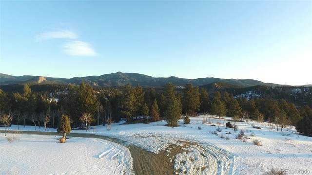 Silver Spur Way, Pine, CO 80470 (MLS #4124447) :: 8z Real Estate