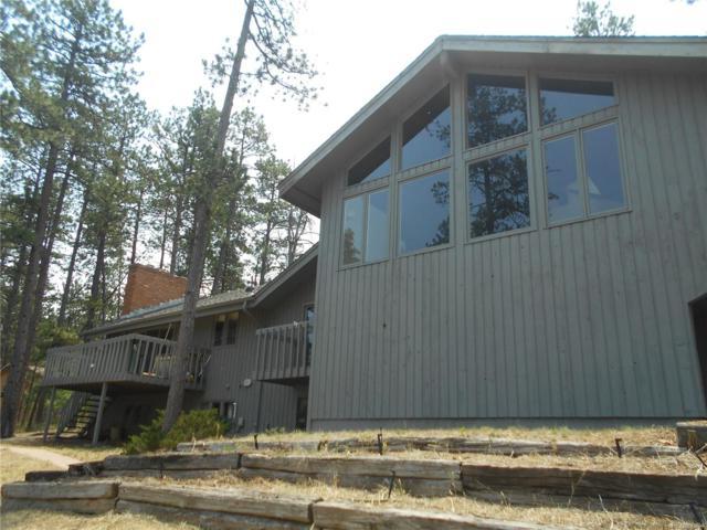 5039 Delaware Drive, Larkspur, CO 80118 (MLS #4125003) :: 8z Real Estate