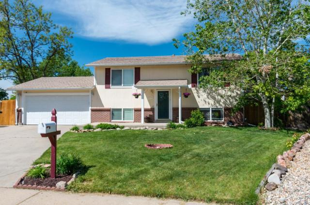 8943 Cody Court, Westminster, CO 80021 (#4126514) :: Sellstate Realty Pros