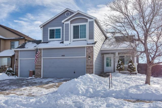 4410 Decatur Avenue, Castle Rock, CO 80104 (#4126652) :: Bicker Realty