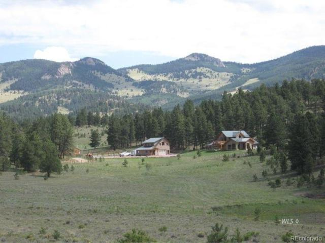 1235 Schulze Ranch Road, Westcliffe, CO 81252 (#4127163) :: The DeGrood Team
