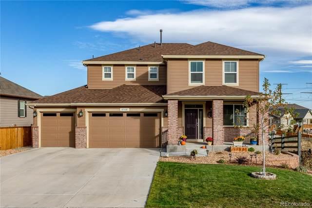 4368 Sidewinder Loop, Castle Rock, CO 80108 (#4128283) :: Peak Properties Group