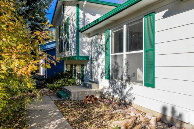 3800 Arctic Fox Drive, Fort Collins, CO 80525 (MLS #4129742) :: 8z Real Estate