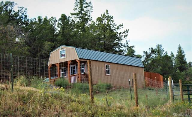 7965 Cr 12, Cotopaxi, CO 81223 (#4131650) :: The DeGrood Team