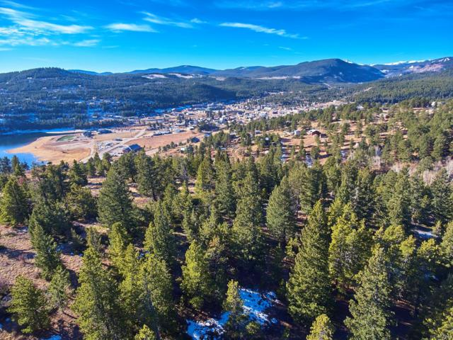 71 Stinky Gulch Road, Nederland, CO 80466 (#4132795) :: The DeGrood Team