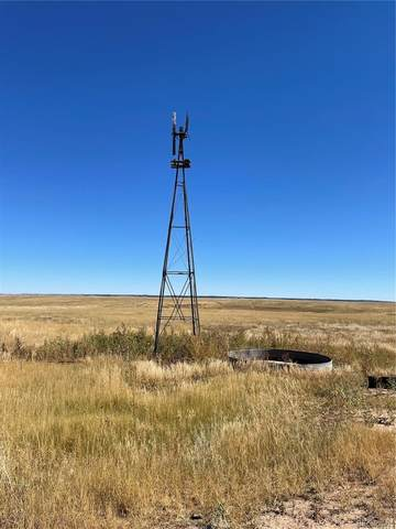 15585 County Rd 166, Kiowa, CO 80117 (#4140018) :: The DeGrood Team