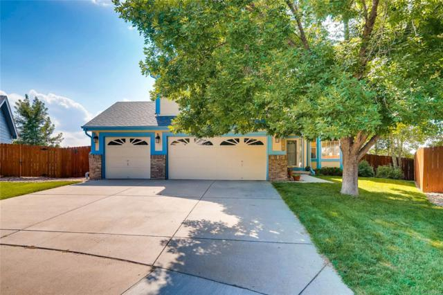 9765 Quay Loop, Westminster, CO 80021 (#4140751) :: Structure CO Group