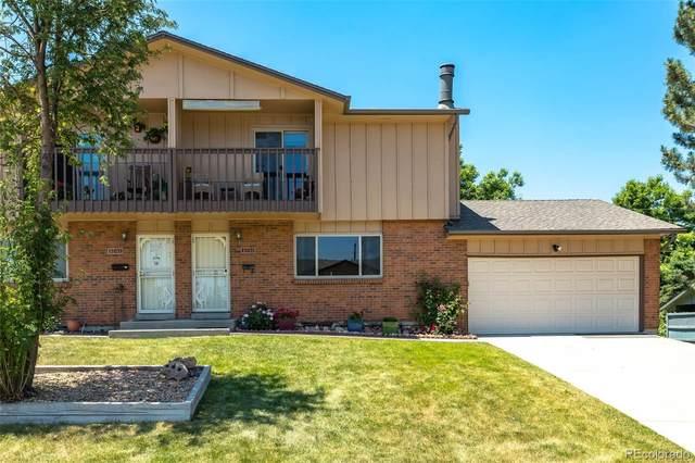 1035 S Alkire Street, Lakewood, CO 80228 (MLS #4142251) :: Wheelhouse Realty