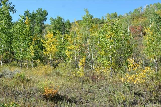 29755 Riffle Run, Oak Creek, CO 80467 (MLS #4143295) :: Bliss Realty Group