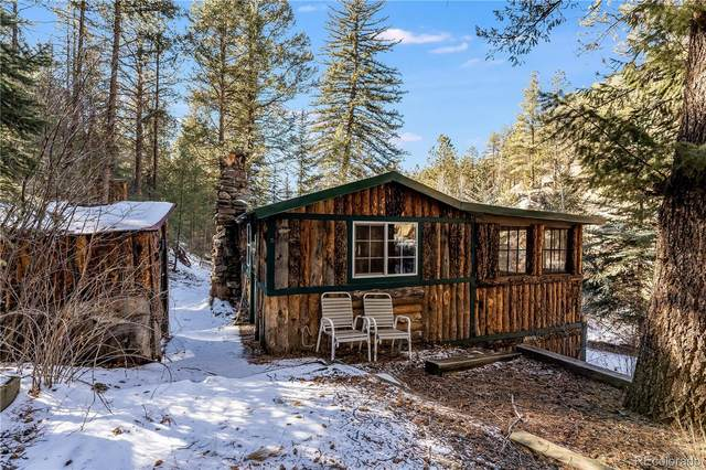 27342 Schuyler Gulch Road, Pine, CO 80470 (#4145881) :: The Griffith Home Team