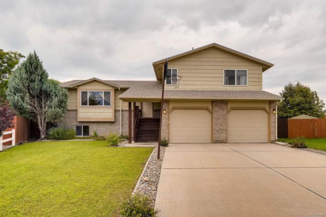 670 Brundidge Court, Colorado Springs, CO 80911 (#4146888) :: The Peak Properties Group
