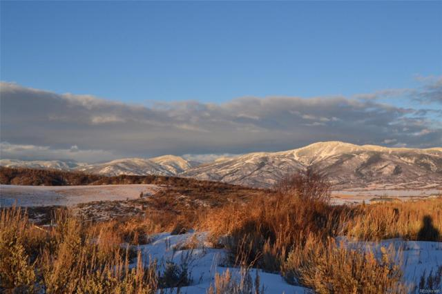 31470 Deer Park Court, Steamboat Springs, CO 80487 (#4148015) :: Structure CO Group