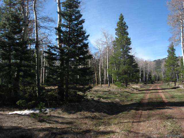 1306 Hassan, Fort Garland, CO 81133 (#4148591) :: Wisdom Real Estate