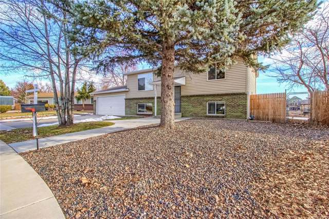 7102 Swadley Court, Arvada, CO 80004 (#4149882) :: Bring Home Denver with Keller Williams Downtown Realty LLC