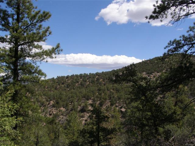 Lot 5 Fil #13 Redtail Trail, Cotopaxi, CO 81223 (#4150947) :: Compass Colorado Realty
