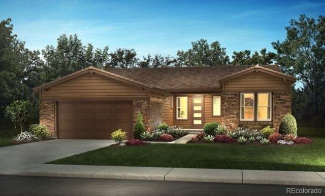 11168 Sweet Cicely Drive, Parker, CO 80134 (#4151211) :: The HomeSmiths Team - Keller Williams