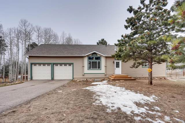 252 Burland Drive, Bailey, CO 80421 (MLS #4155498) :: 8z Real Estate