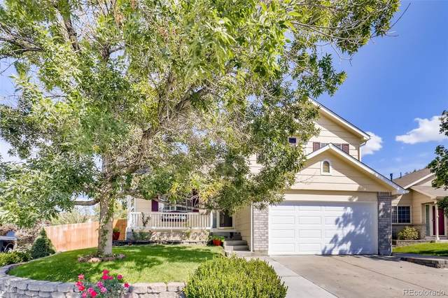 11586 River Run Parkway, Commerce City, CO 80640 (#4156785) :: Bring Home Denver with Keller Williams Downtown Realty LLC