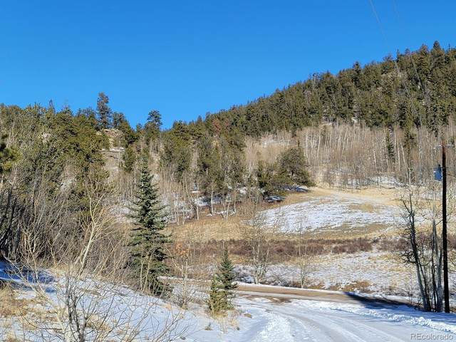 1865 Ute Trail, Como, CO 80432 (#4157300) :: Wisdom Real Estate