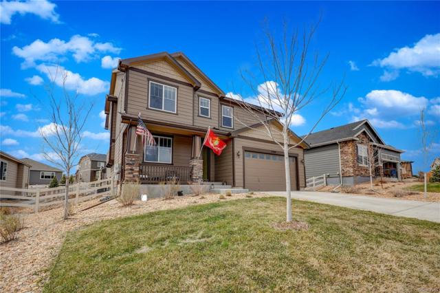 5709 Echo Hollow Street, Castle Rock, CO 80104 (#4158900) :: The Heyl Group at Keller Williams
