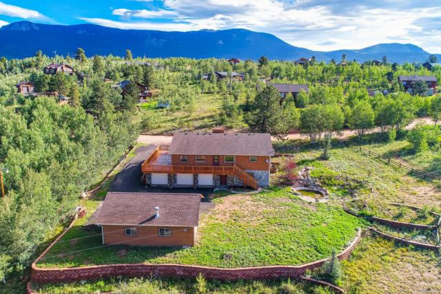 81 Gold Flake Terrace, Bailey, CO 80421 (#4161951) :: The DeGrood Team